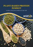 Plant-based Protein Market - Global Outlook and Forecast 2020-2025