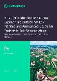 H1 2019 Production and Capital Expenditure Outlook for Key Planned and Announced Upstream Projects in Sub-Saharan Africa - Nigeria Dominates Crude Production and Capex Outlook